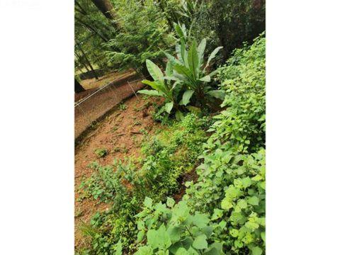 terreno con rio y entorno boscoso
