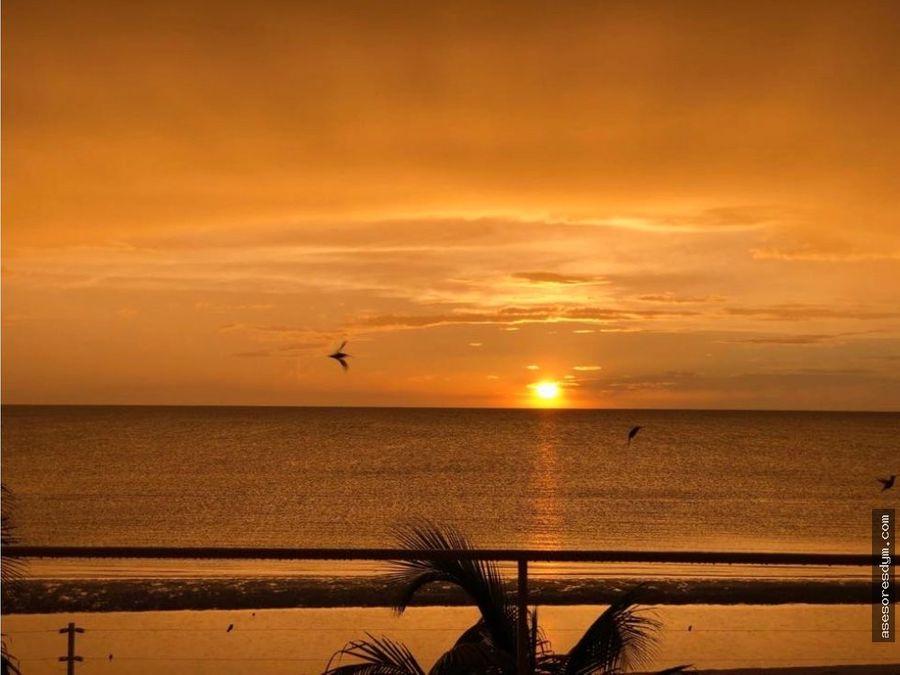 terreno celestun yucatan palmeras de celestun
