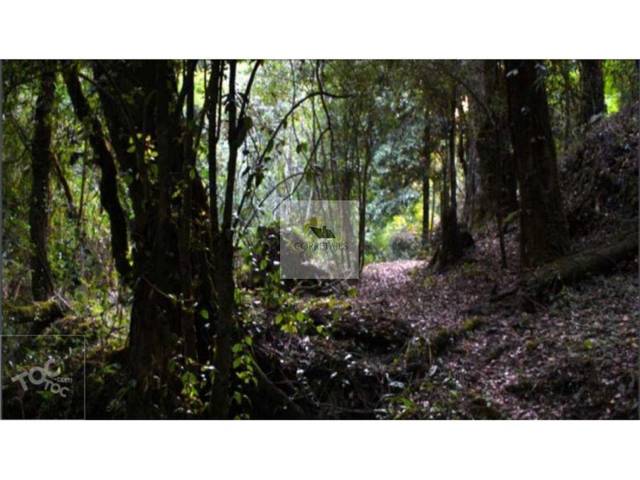 terreno de 25 hectareas con cascada coilaco pucon