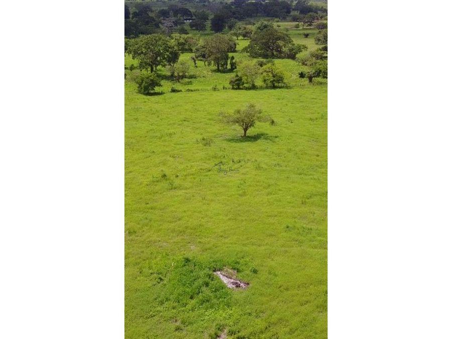 terreno de uso industrial a 1 km de variante mamonal gambote