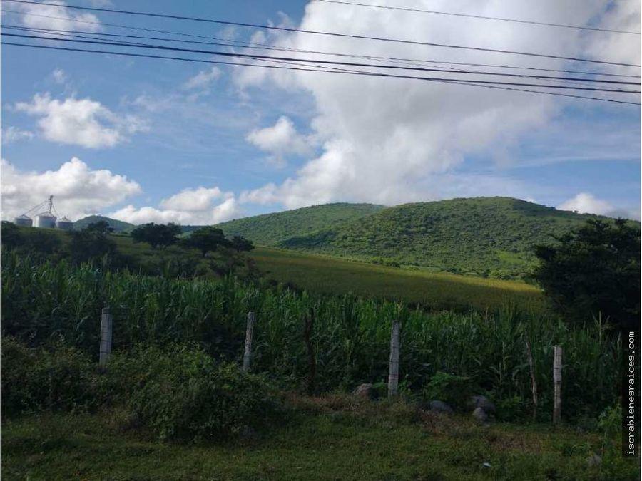 terreno en venta 12 hectareas en cuautla