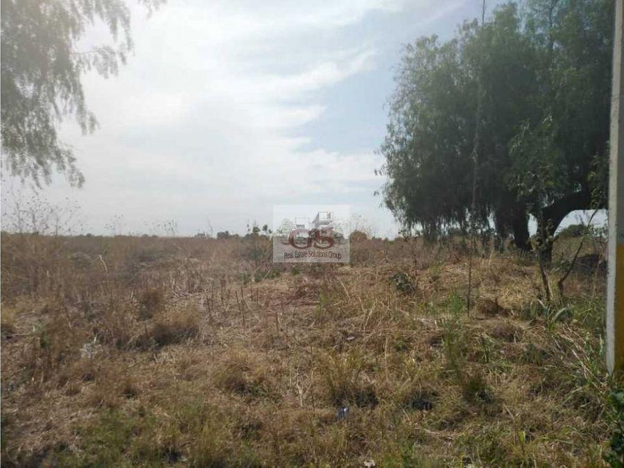 terreno en venta 98 hectareas celaya gto