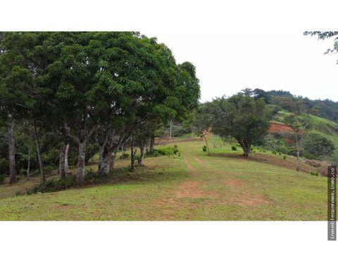 terreno en venta cerro azul rah pa 20 1136