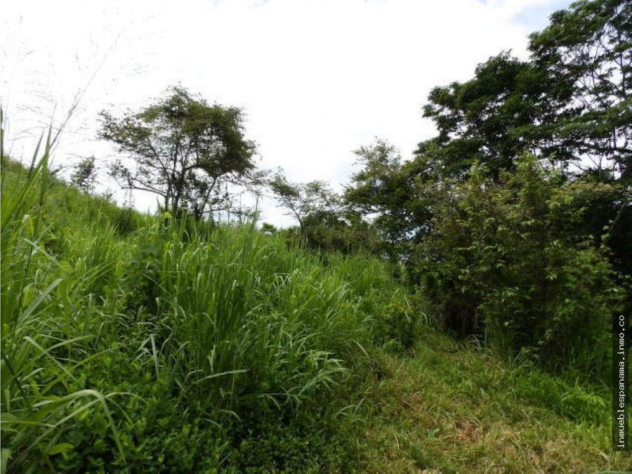 terreno en venta san carlos rah pa 20 845