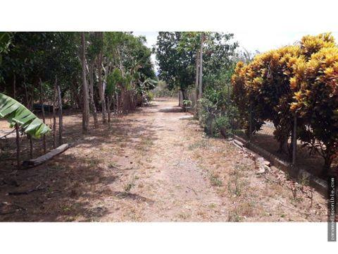 terreno en venta punta chame rah pa 20 12541