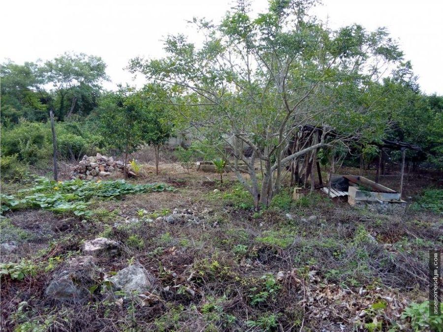 terreno ejidal al sur de merida con construccion