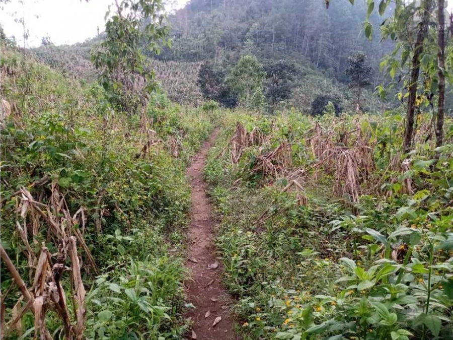 terreno san juan chamelco coban