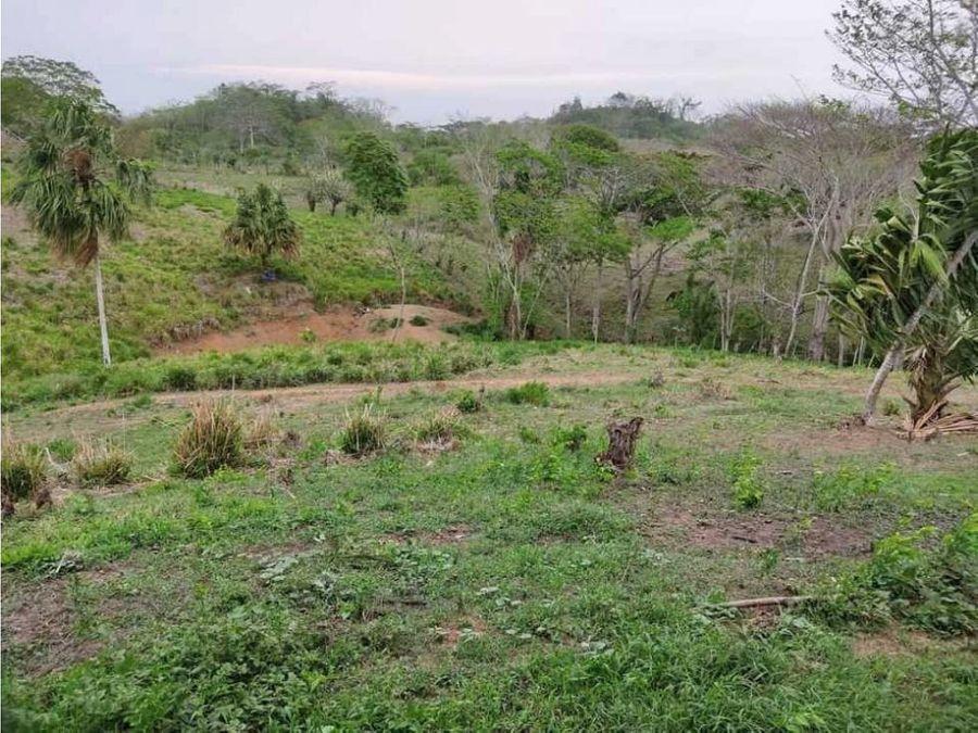 terreno tipo finca en el kilometro 12 via planeta en monteria
