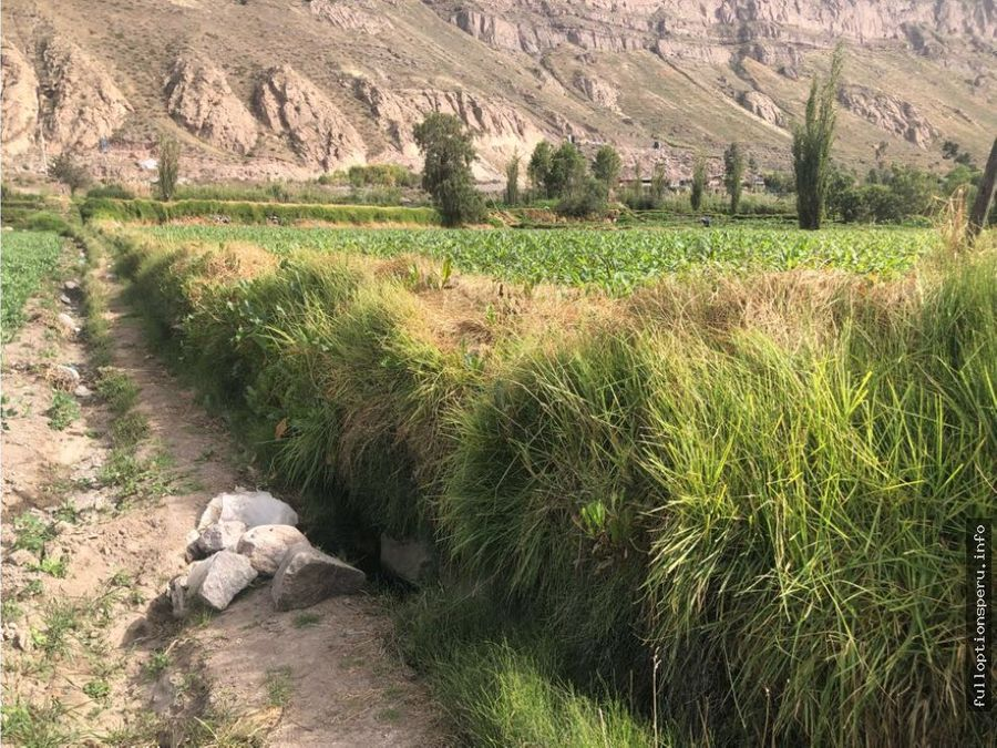 terreno valle del chilina