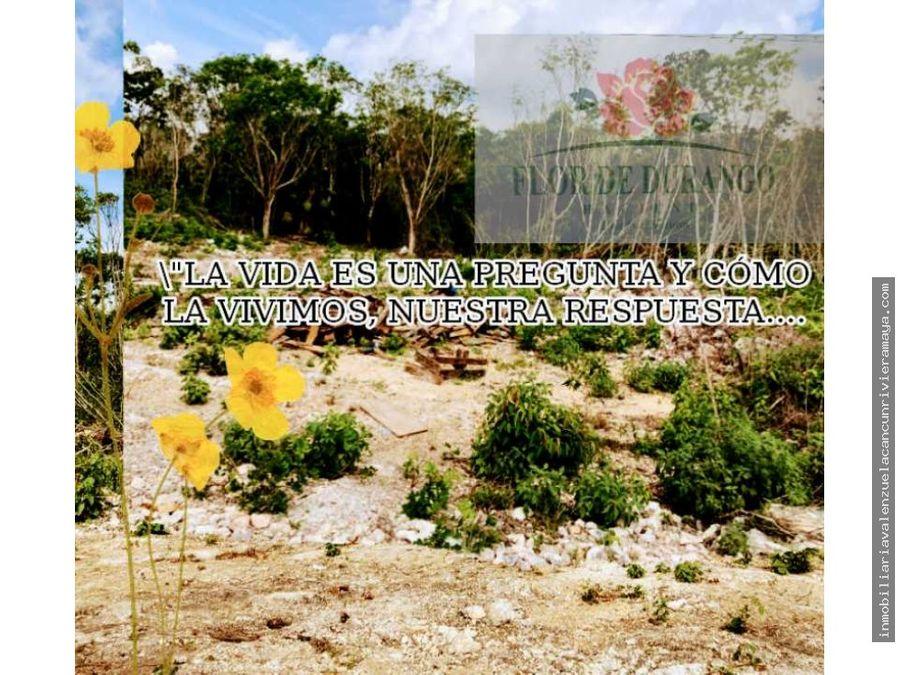 terrenos en cancun