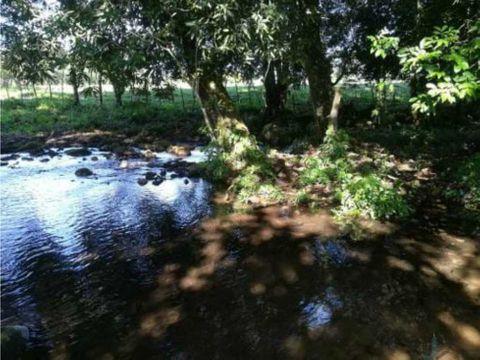 vendo casi 2 hectareas planas con agua viva