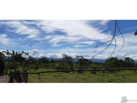 vendo hectareas de terreno con topografia plana en potrerillos