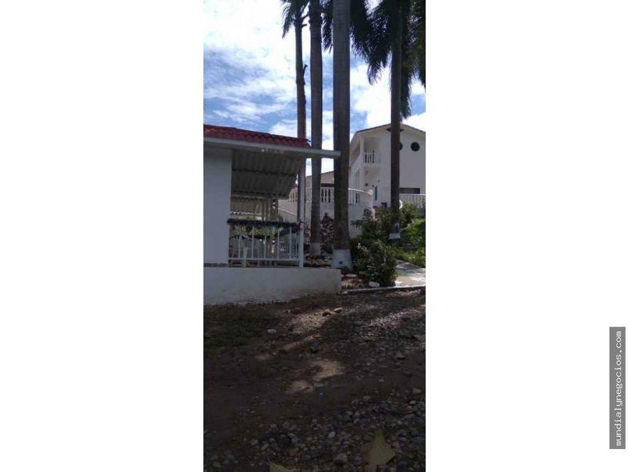 vendo hermosa casa quinta en carmen de apicala con buena renta 001