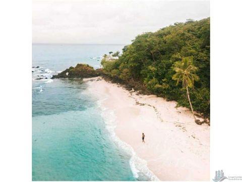 vendo isla de 21 hectareas y otra de 29hectareas montijo