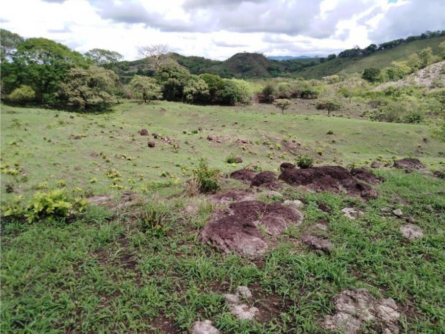 vendo terreno 7has 2795m2 en cabuya chame