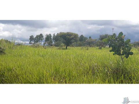 vendo terreno de 04 hectareas en caldera