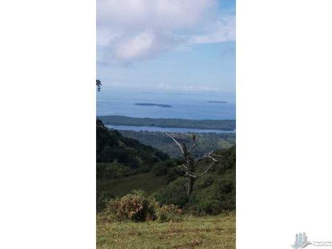 vendo terreno de 250 hectareas en tole