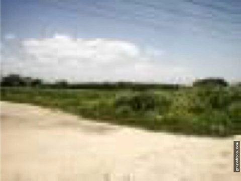 vendo terreno via turmero sector gueritos