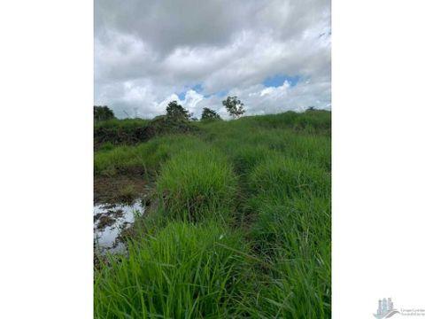 vendo 05 hectareas de terreno en boqueron