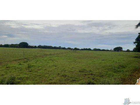 vendo 124 hectareas de terreno en boqueron
