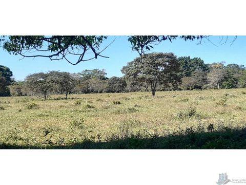 vendo 21 hectareas planas en rovira