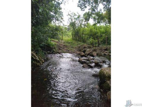 vendo 35 hectareas con agua viva guaca