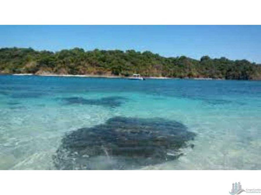 vendo 3 hectareas derecho posesorio en isla cebaco