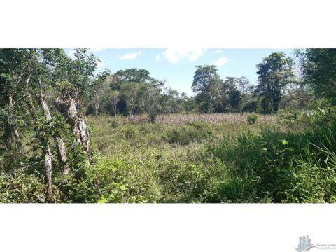 vendo 73 hectareas y hasta 100 hectareas de terreno plano santa marta