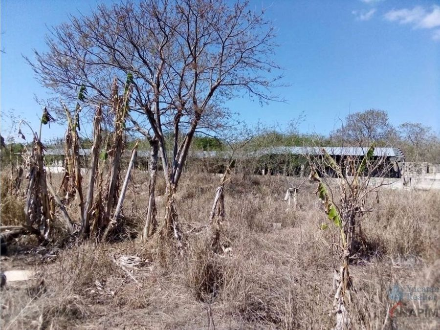 venta de hectarea en chichi suarez