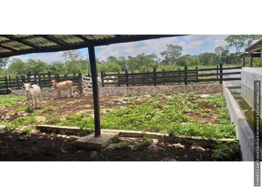 venta de hectareas