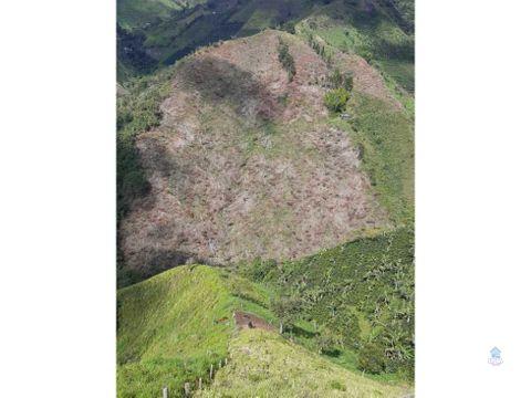 venta de lote 7 hectareas en el aguila valle