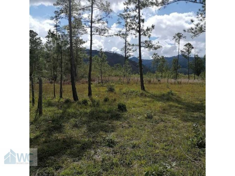 venta de lote de terreno pinares del valle