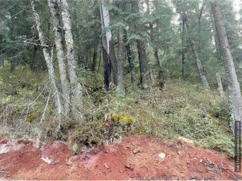 venta de lotes rusticos campestres en mineral del monte hgo
