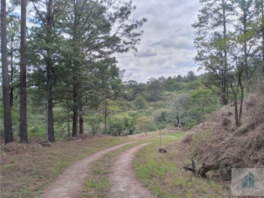 venta de terreno kilometro 25 carretera hacia el sur