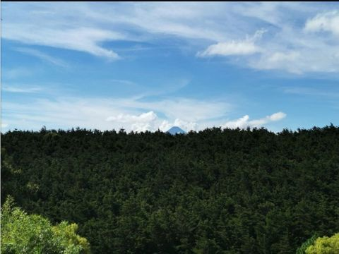 venta de terreno la foresta carretera a fraijanes