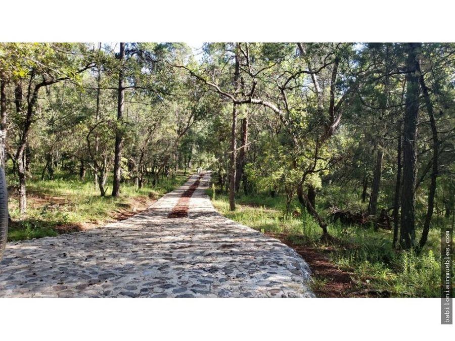 venta de terreno rustico boscoso 23 hectareas en huasca hgo