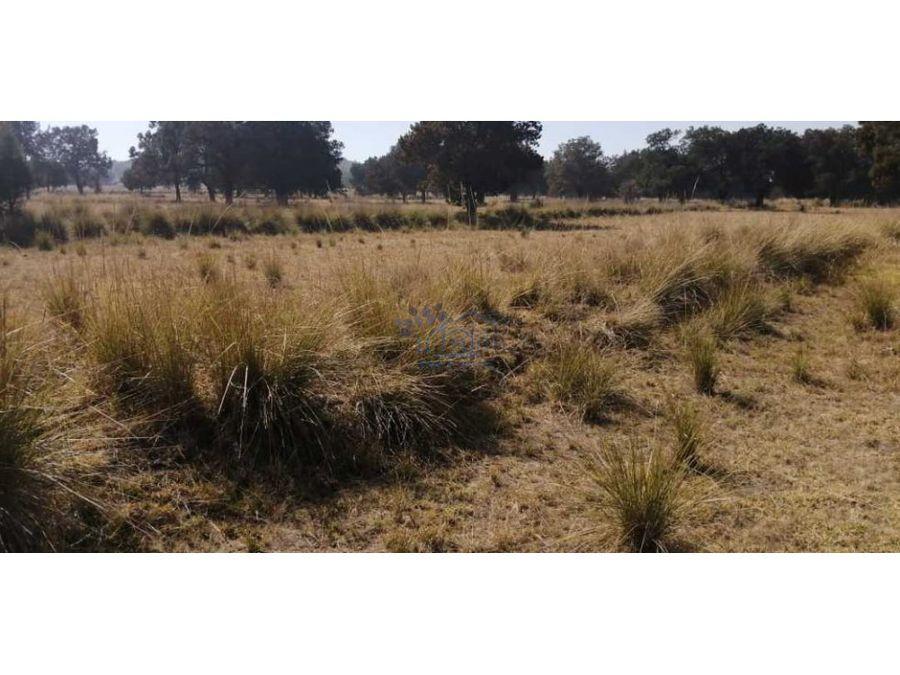 venta de terreno rustico san luis apizaquito