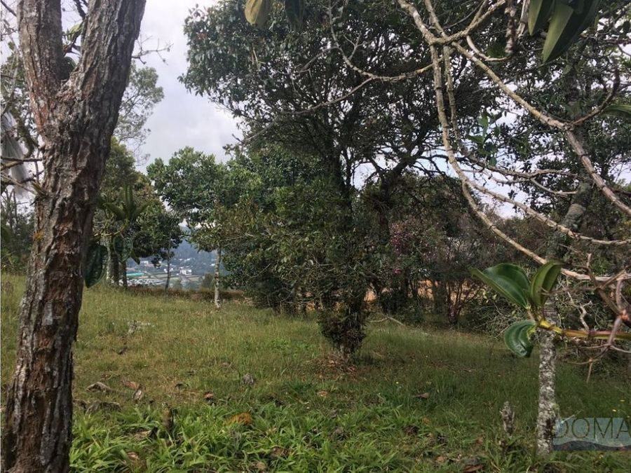 venta lote alto de las palmas a pocos metros de indiana
