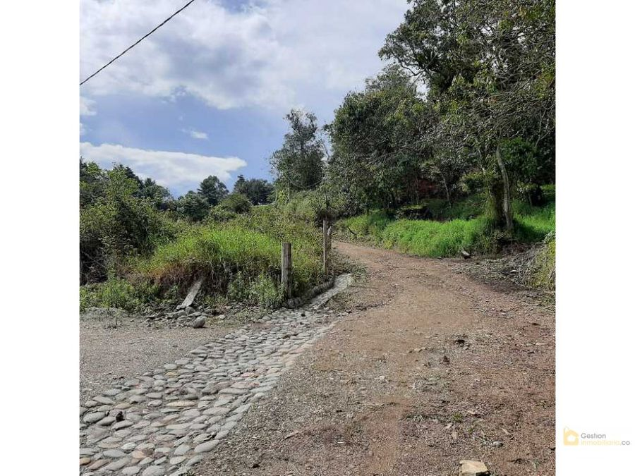 venta parcela 4000m2 parcelacion san francisco popayan