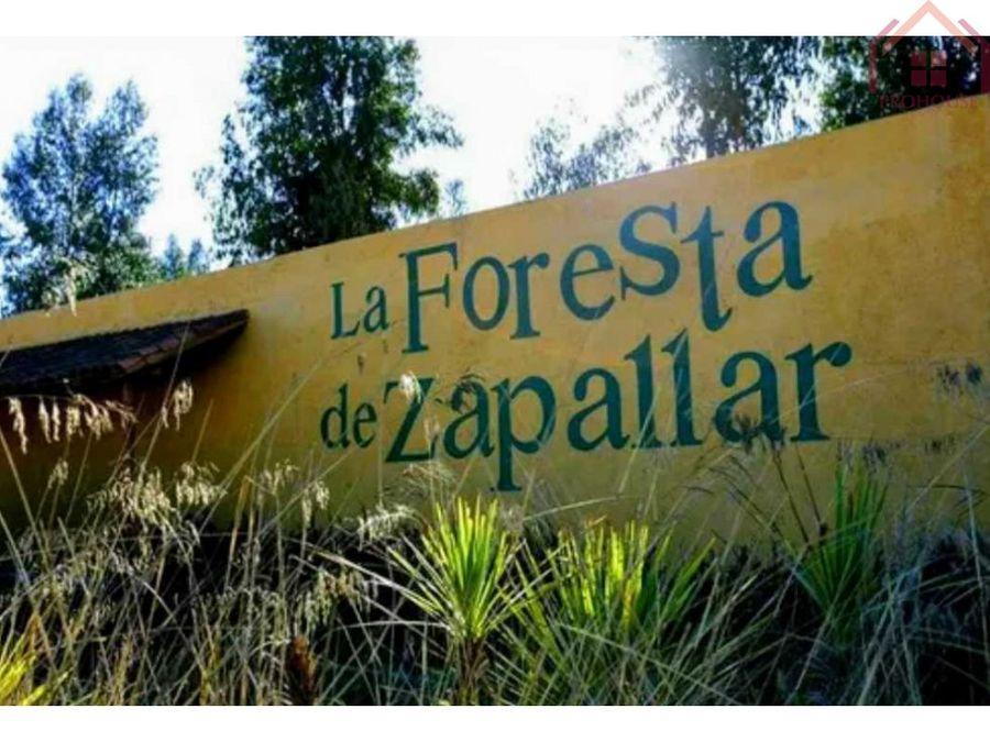 venta parcela la foresta de zapallar