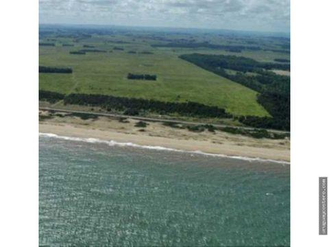 campo de 145 has fraccionables con vista al oceano