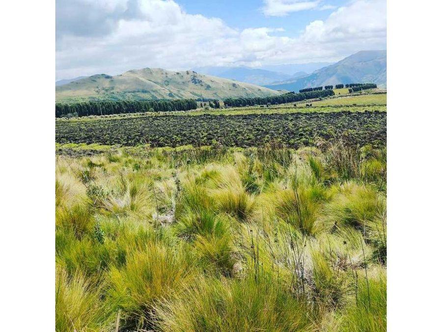 10 hectareas en venta olmedo cayambe