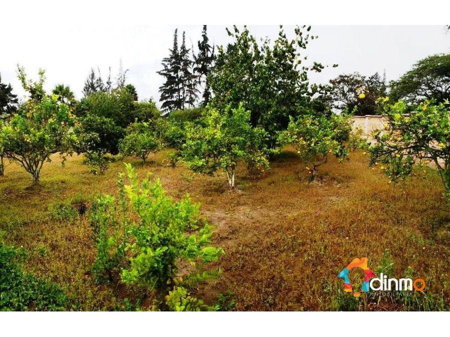 fabuloso terreno puembo 1550 m2 urbanizado