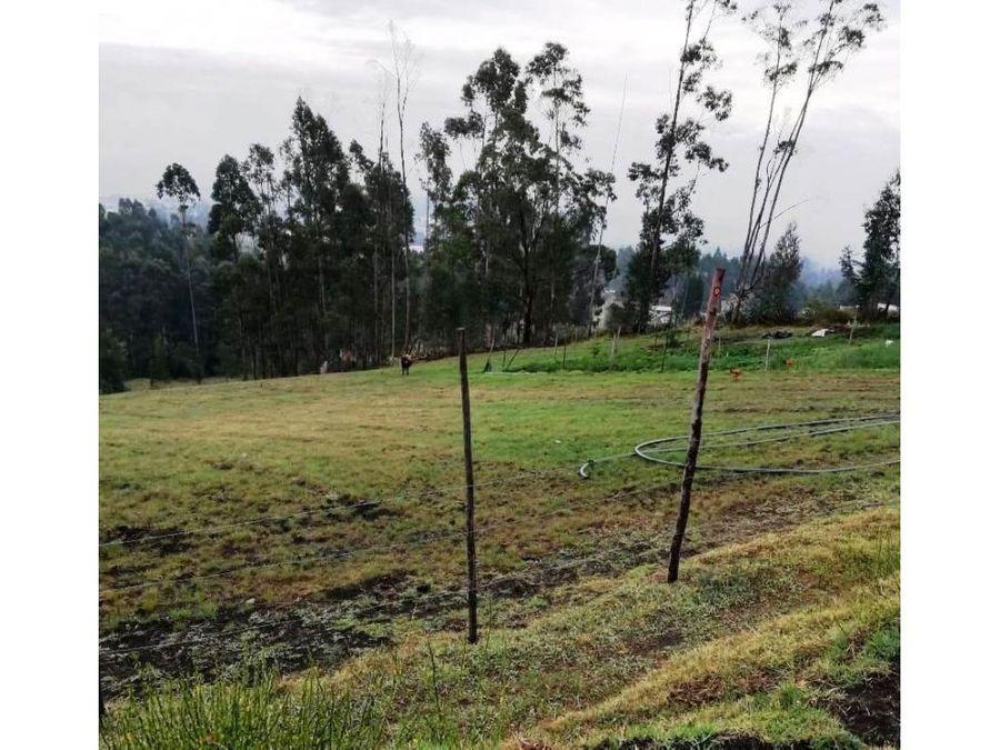 terreno con casas en venta yaruqui 1 hectarea con vista