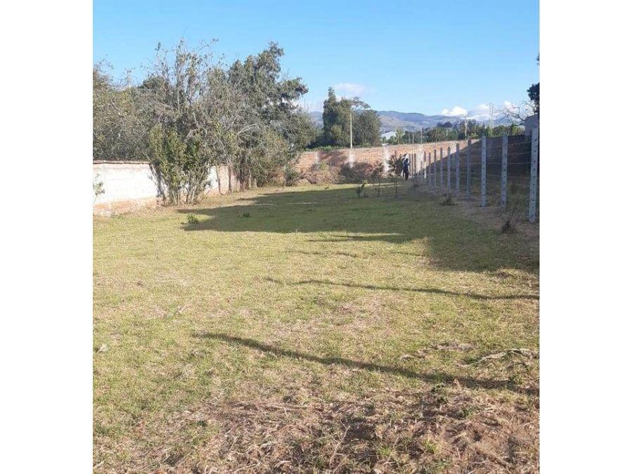 terreno 1070 m2 plano con cerramiento puembo ubicacion fenomenal