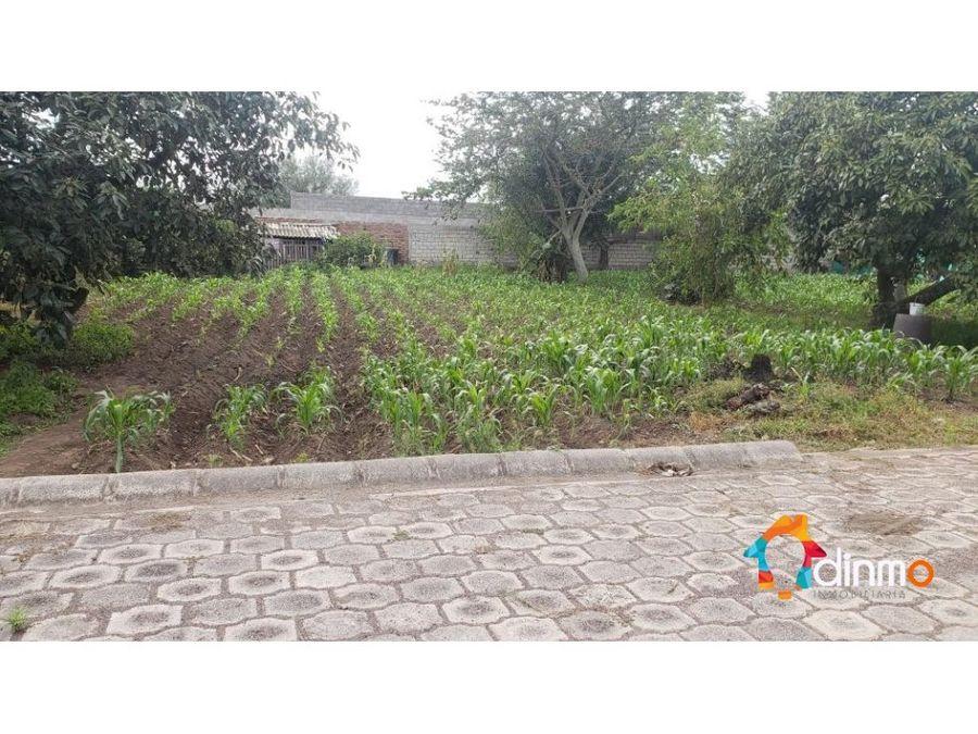 terreno urbanizado de 500 m2 puembo central en venta