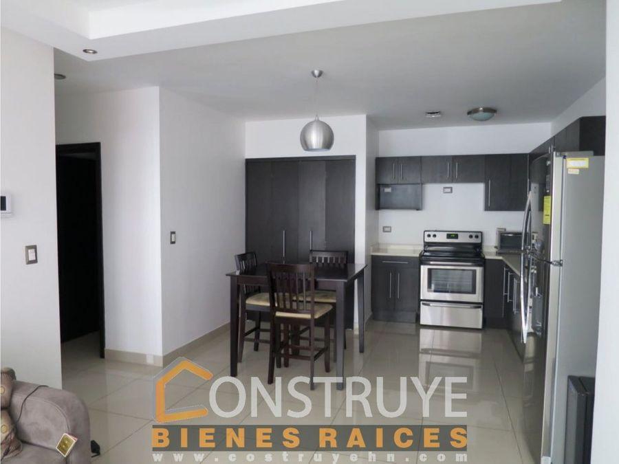 renta de apartamento en condominios proceres