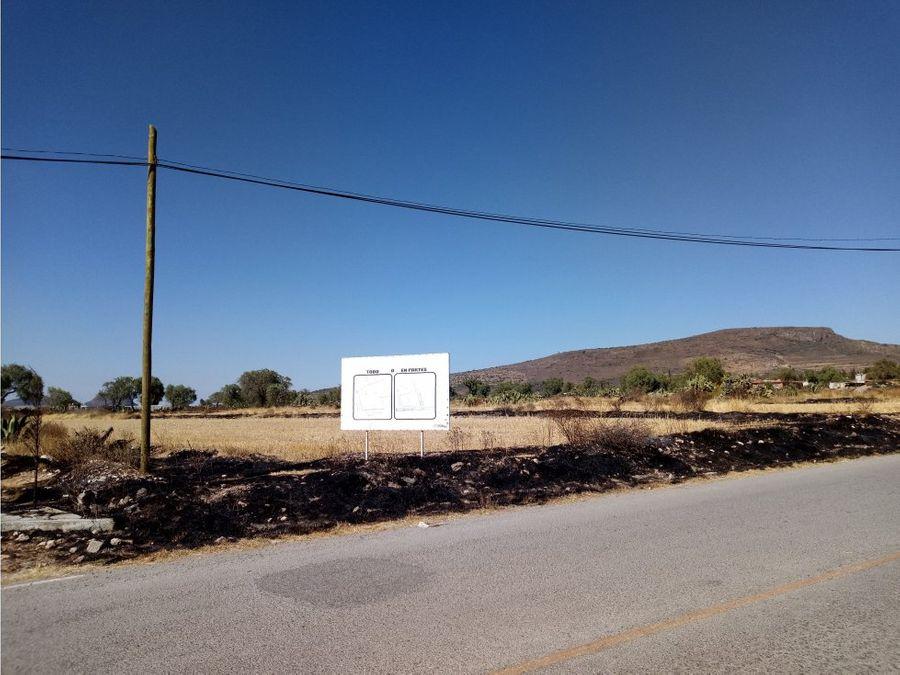 venta de terreno san miguel tornacuxtla hidalgo