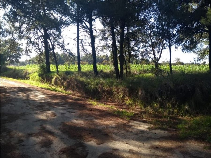 venta de terreno en san bartolome cuauhuizmatla