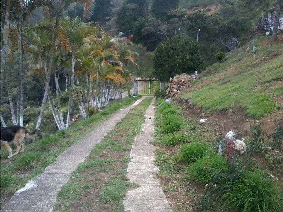 venta de finca vereda el zarzal copacabana